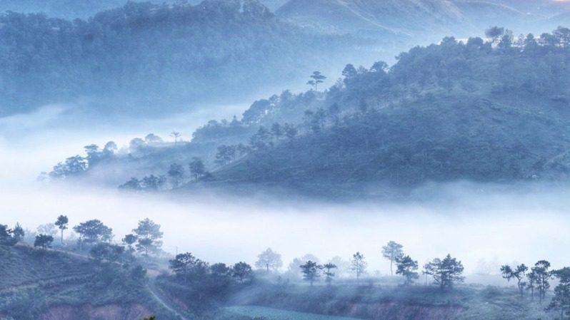 Sương mù bao quanh đồi Thiên Phúc Đức vào buổi Sáng