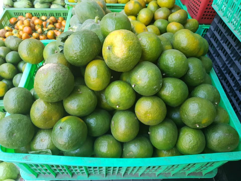 Đông Dương Fruits