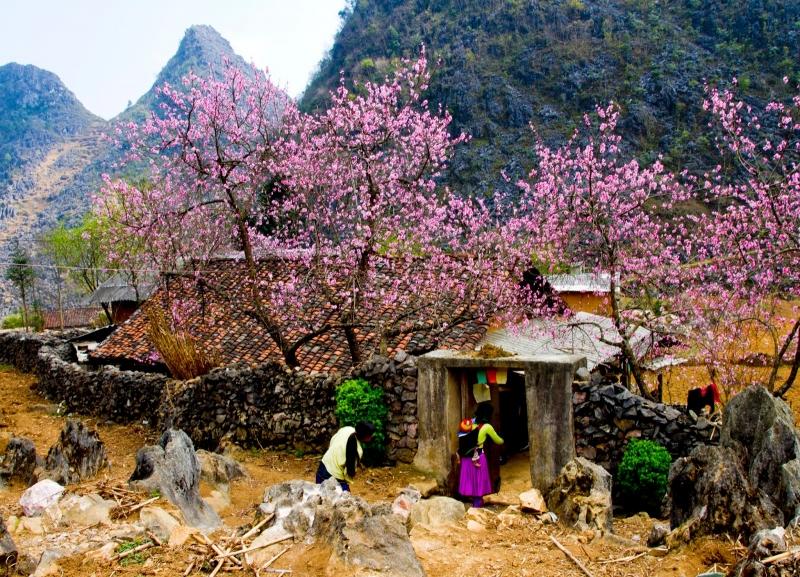 Những ngôi nhà vách đá nằm giữa núi đồi