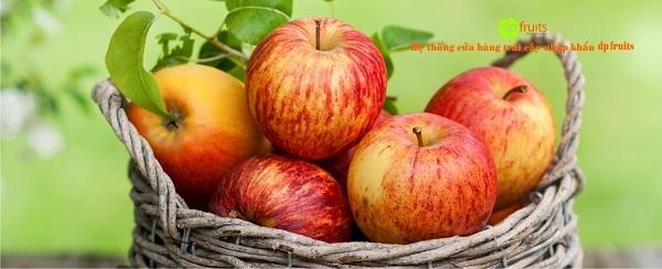 Thương hiệu trái cây nhập khẩu DP Fruits
