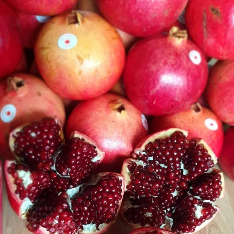 DP Fruits