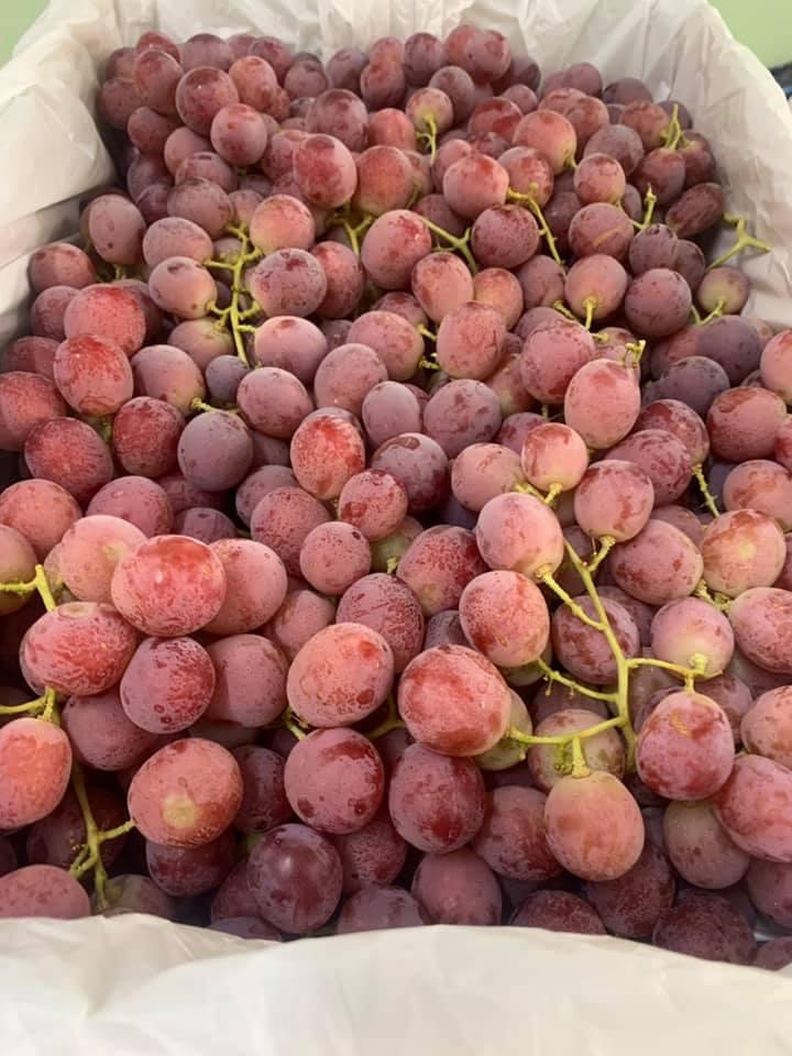 DP Fruits Lạng Sơn