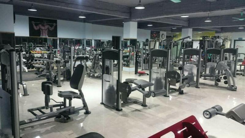 Dragon Gym - Fitness - Yoga Center