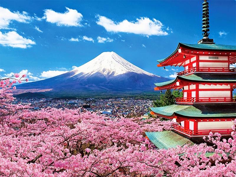 Top 10 lý do vì sao bạn nên học tiếng Nhật từ bây giờ