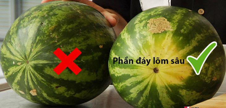 Nếu trái dưa nặng hơn so với kích thước vốn có của nó, thì chứng tỏ dưa đó rất mọng nước