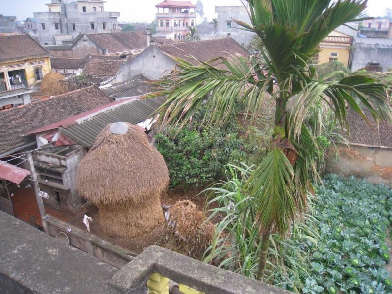 Những mái nhà tại xã Đức Hòa