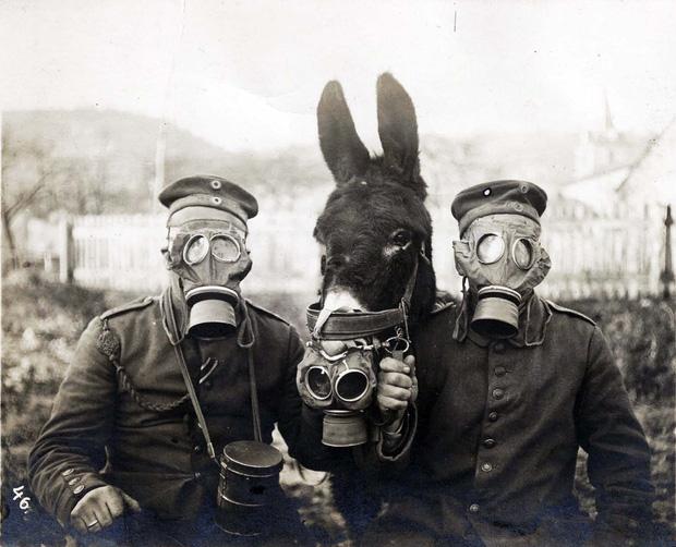 Thua trận nên nhận hết tội ác chiến tranh, âu cũng là lẽ thường.