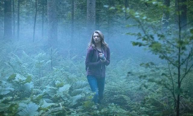 Đừng hoảng loạn khi bị lạc vào rừng