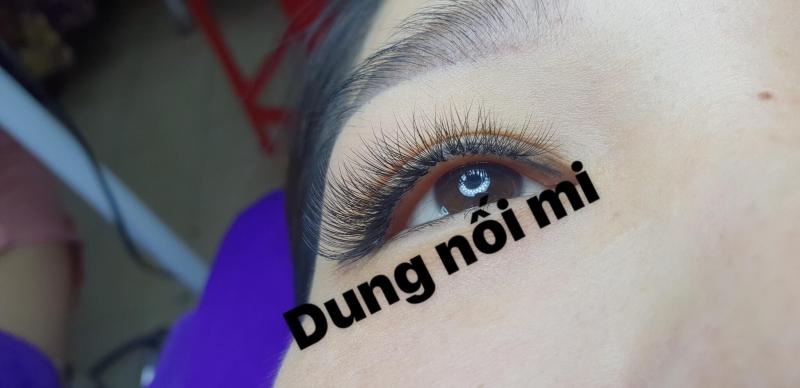 Dung's Eyelash