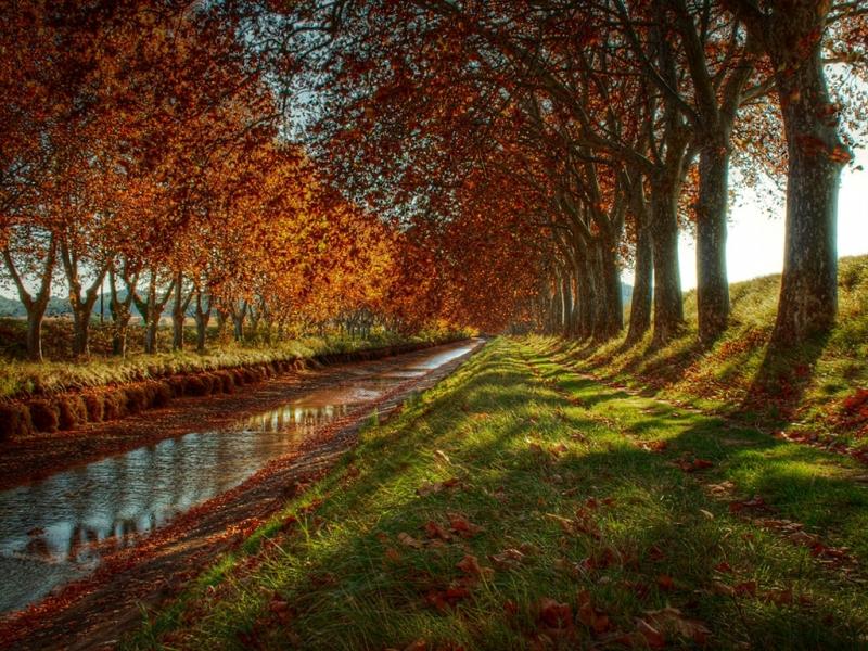 Đường kênh đào Midi - Pháp