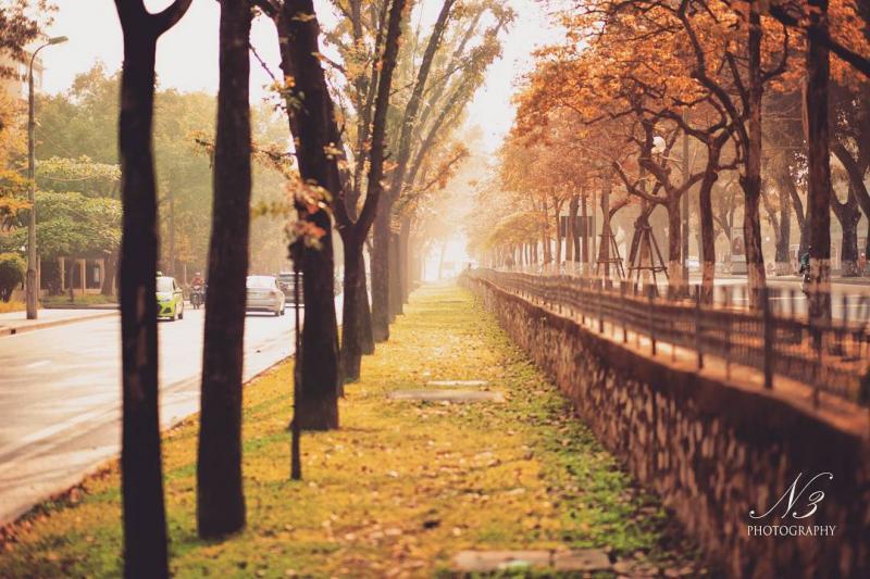 Đường Kim Mã