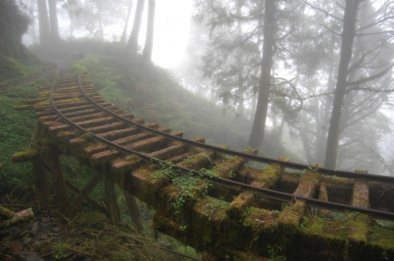 Những bậc thang cũ kĩ bám đầy rêu phong