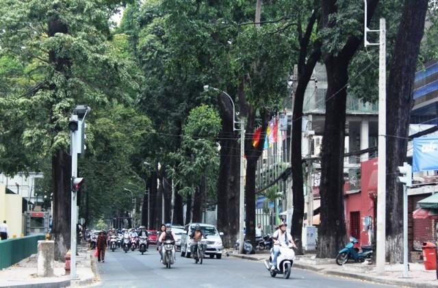 Con đường mua sắm chất nhất Sài Gòn – Nguyễn Đình Chiểu
