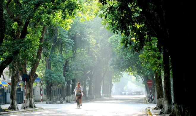 Buổi sáng tinh sương trong lành trên đường Phan Đình Phùng