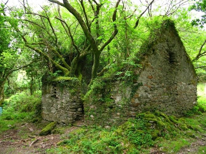 Men theo con đường mòn Kerry, du khách có thể khám phá những điều vô cùng thú vị về quốc đảo Ireland