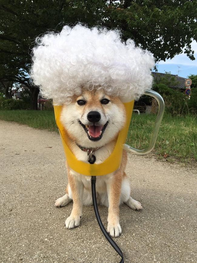 Xem tóc em ấy giống cái gì cả nhà?