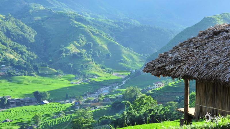 Top 12 Homestay view ruộng bậc thang đẹp nhất mùa lễ hội ở Sapa