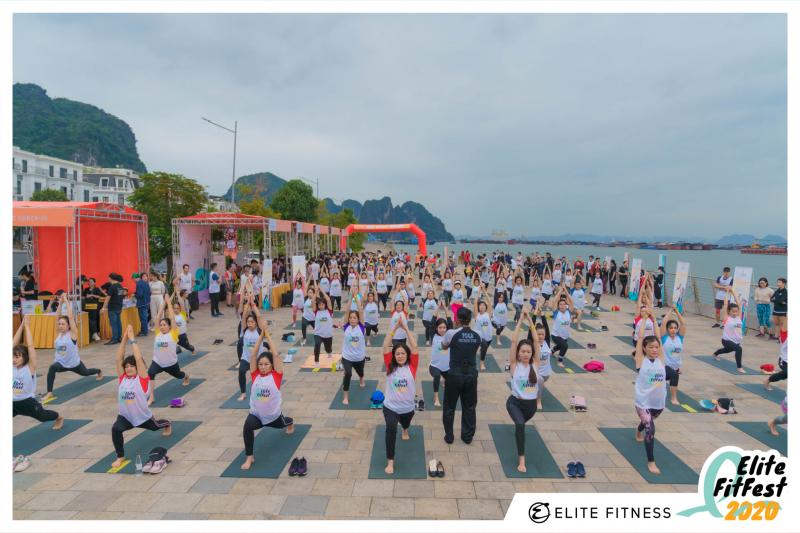 Elite Fitness Lý Thường Kiệt