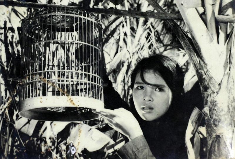Phim Em Bé Hà Nội
