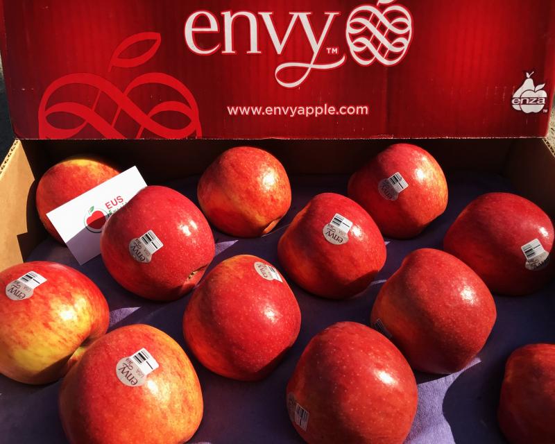 EUS Fruit