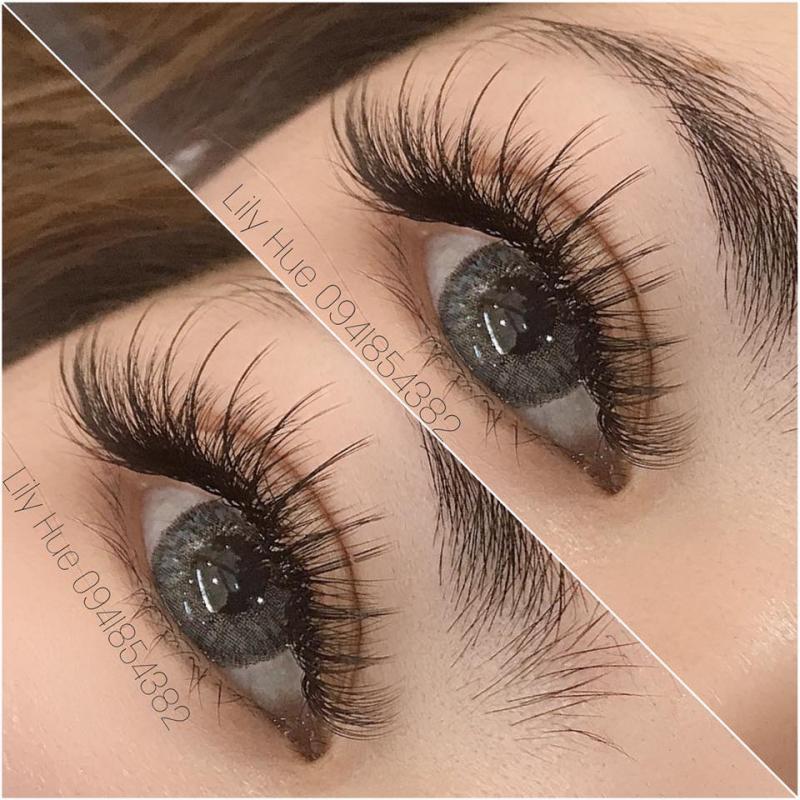 Eyelash Lily