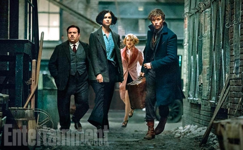 Phim Fantastic Beasts and Where to Find Them