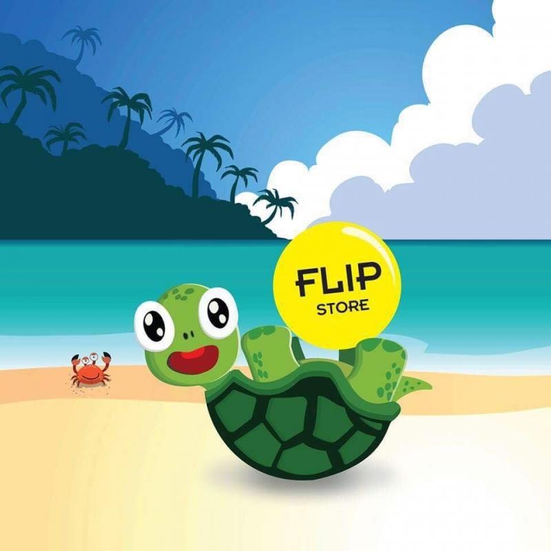 Logo chú rùa đáng yêu của Flip