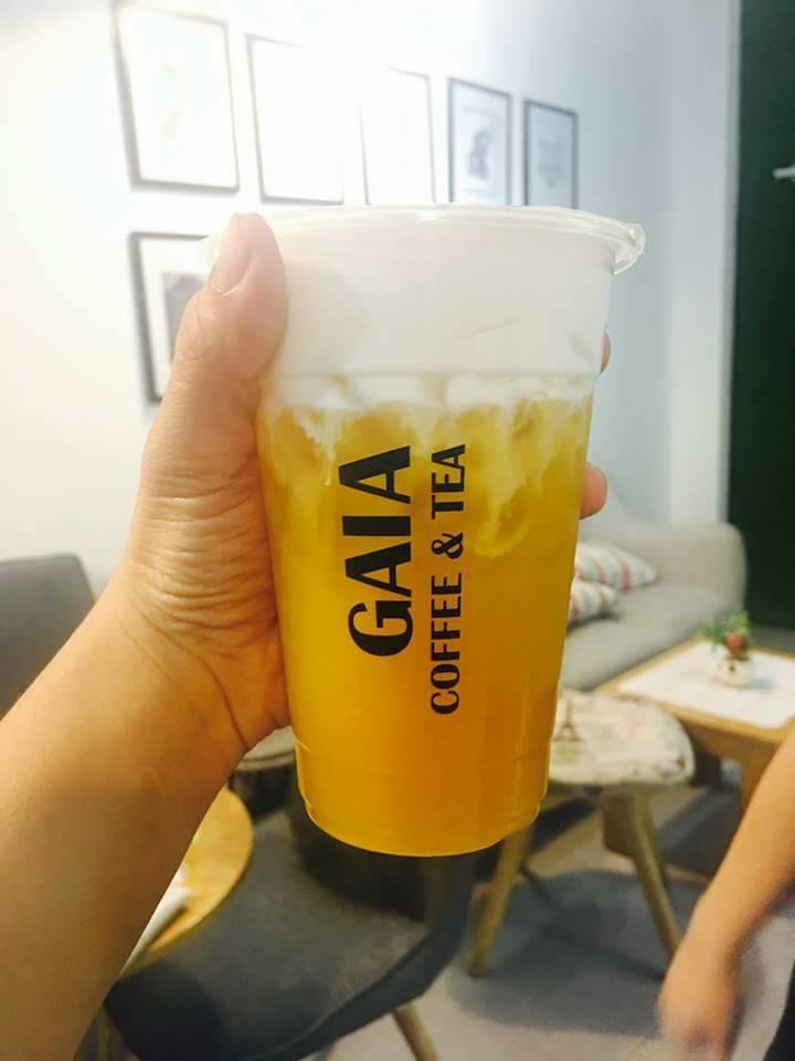 GAIA Coffee & Tea