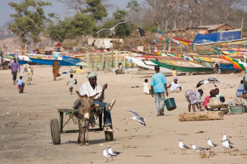 Mức lương tối thiểu ở Gambia là 317 USD/năm