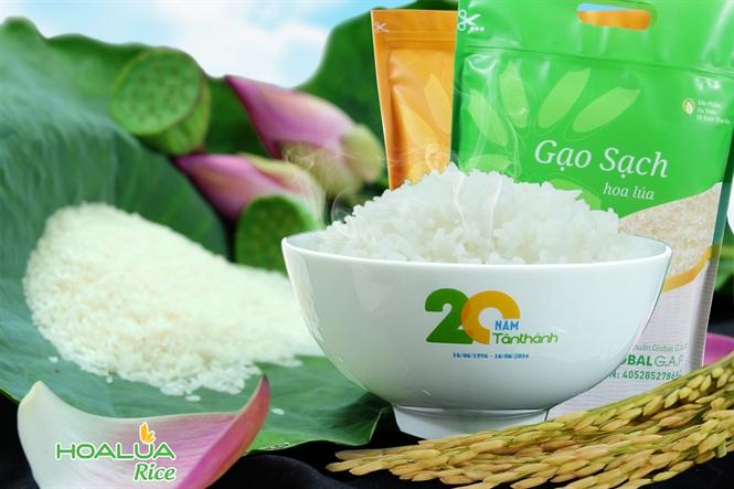 Gạo Hoa Lúa là thương hiệu gạo sạch tiên phong sử dụng chế phẩm sinh học chiết xuất 100% từ thiên nhiên cho vùng nguyên liệu và an toàn cho sức khỏe nhất tại Việt Nam