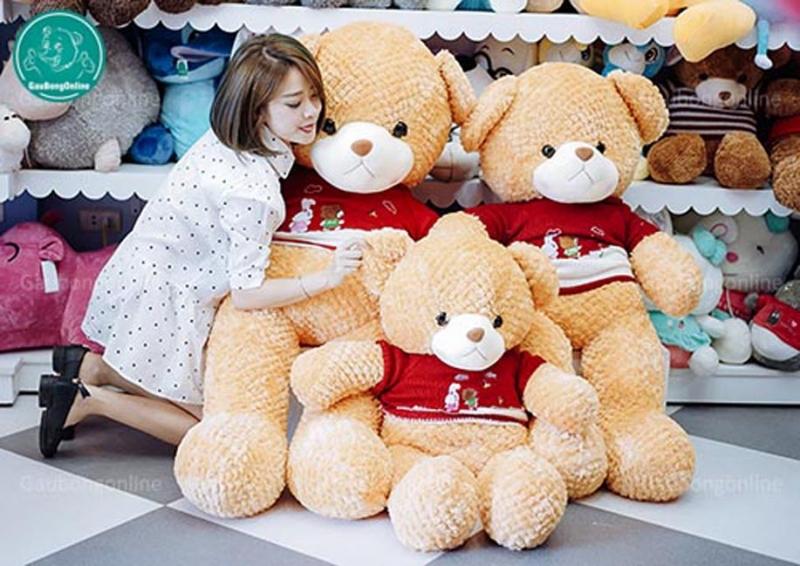 Teddy Lông Thẳng- sản phẩm của Gấu Bông Online