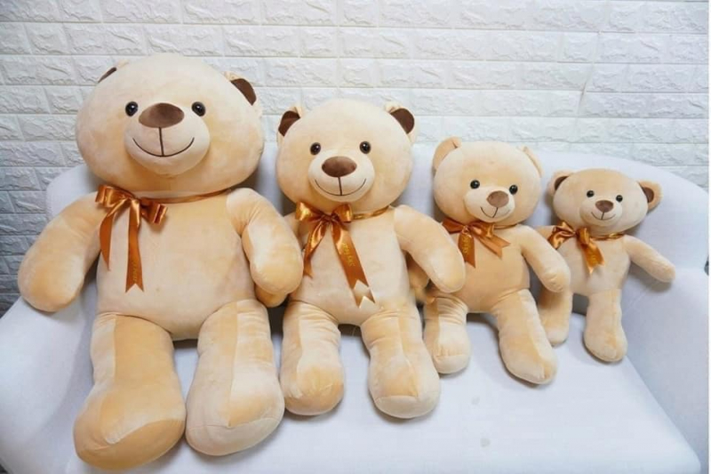 Gấu Bông Tam Kỳ