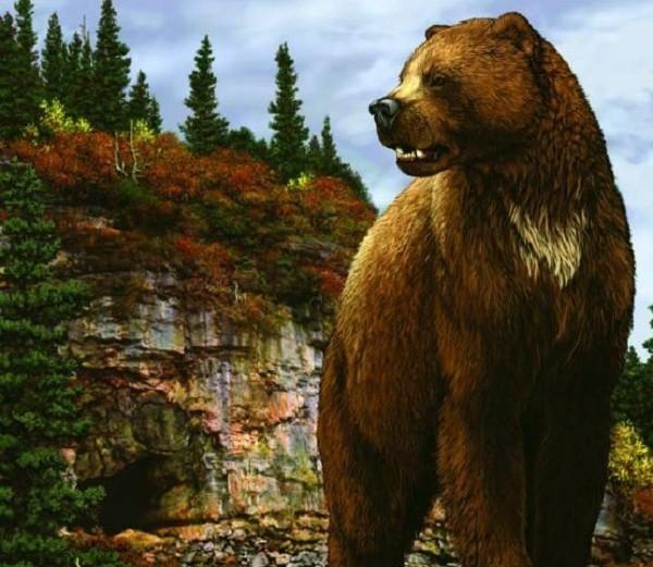 Gấu mặt ngắn khổng lồ