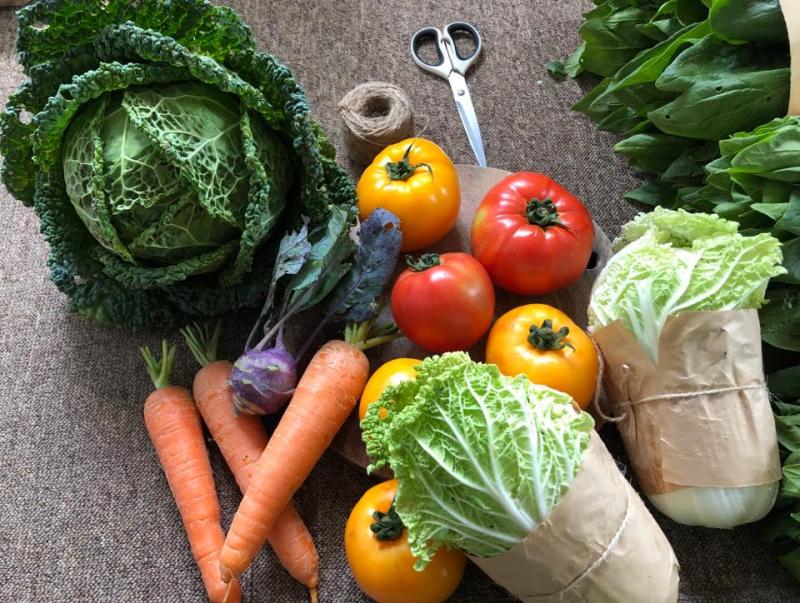 Gia đình Bio cung cấp các sản phẩm rau củ sạch, an toàn.