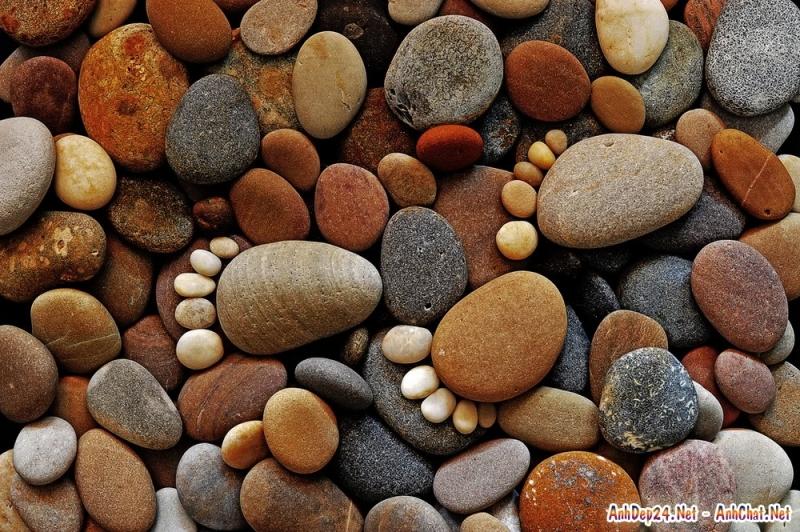 Giá trị của hòn đá