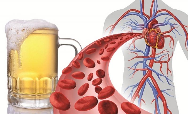Bia bảo vệ tim mạch