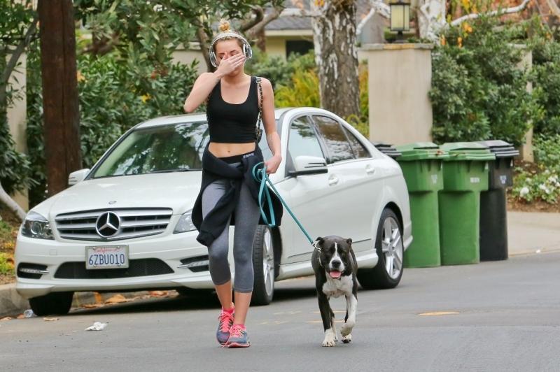 Chó giúp bạn chăm tập thể dục hơn