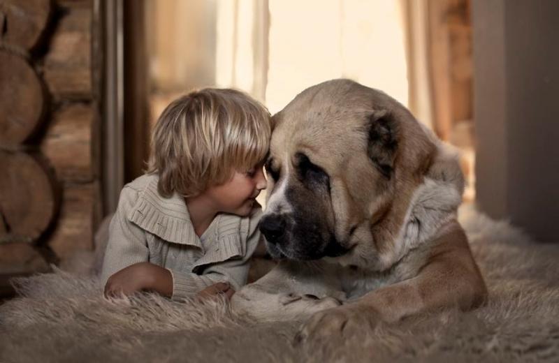 Chó giúp giảm chứng tự kỷ ở trẻ em