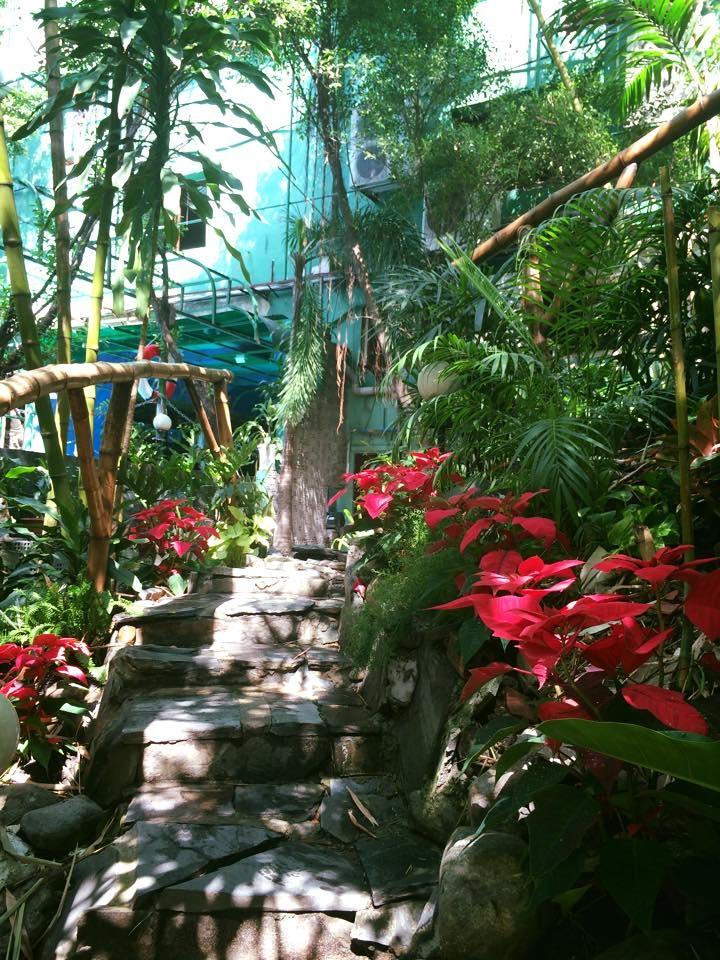 Nằm trong khuôn viên khu biệt thự của vị lãnh sự Chilê thuộc Q1, Tropic Spa được thiết kế và trang trí mang đậm phong cách Đông Dương