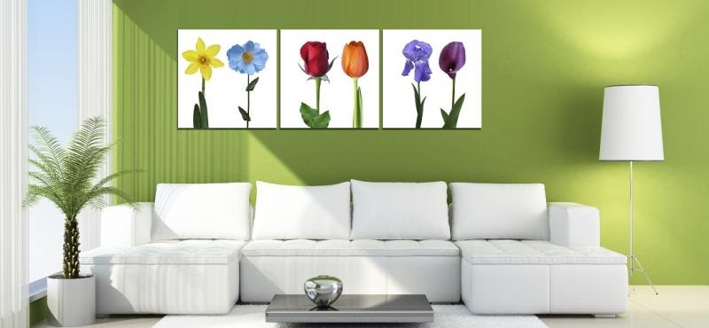 Trang trí tường bằng tranh ảnh