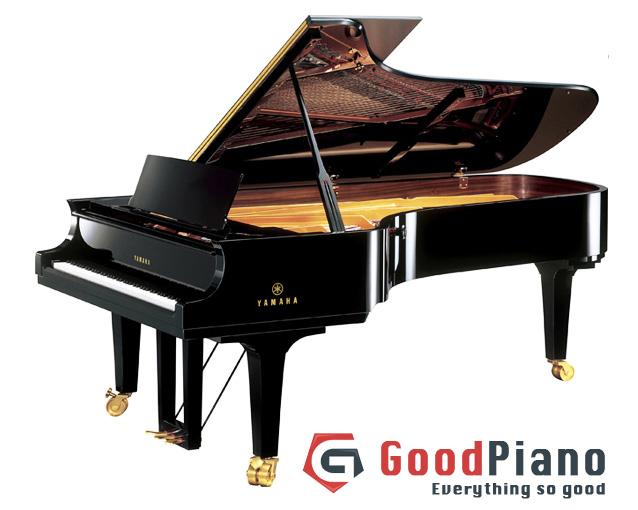 Với nhiều năm kinh nghiệm hoạt động trong lĩnh vưc tư vấn mua bán đàn piano Goodpiano hứa hẹn sẽ đem đến cho bạn sự lựa chọn hoàn hảo.