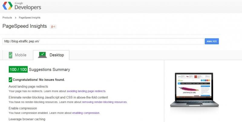 Không chỉ là tốc độ website, Google Page Speed còn có những phân tích đánh giá khác.