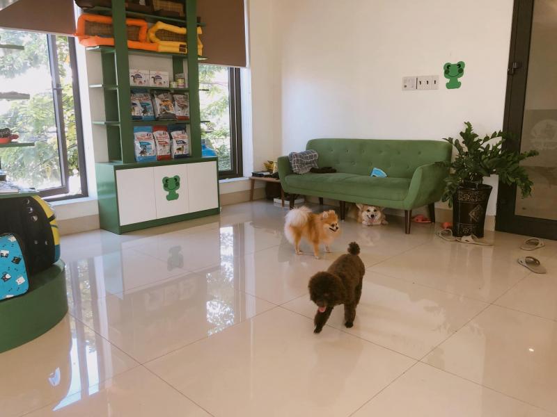 Green Pet Grooming & Shop