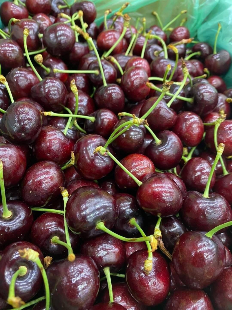 Greenfruits.vn