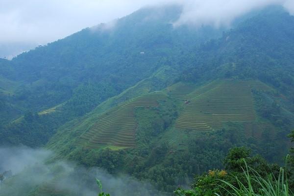 Và dù đến Hà Giang vào bất cứ mùa nào trong năm, du khách cũng bị hấp dẫn bởi màu sắc của núi rừng