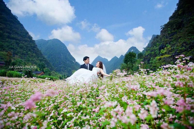 Chụp ảnh cưới ở thung lũng Sủng Là mùa hoa tam giác mạch