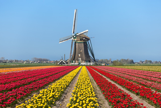 Hà Lan là nước dẫn đầu châu Âu về chỉ số chi tiêu cho y tế hàng năm