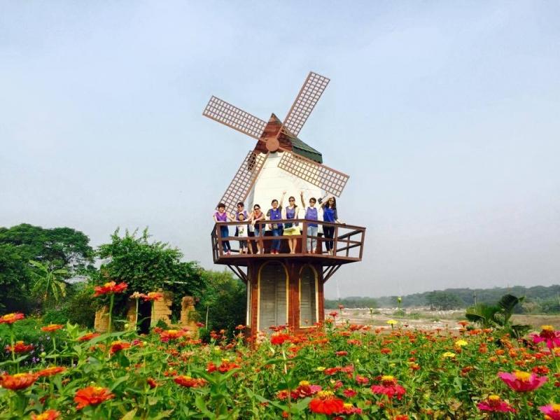 Vườn hoa bãi đá Sông Hồng - một trong những địa điểm check in nổi tiếng ở Hà Nội