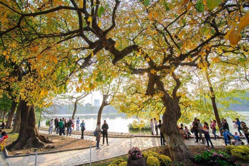 Hà Nội được - trung tâm văn hóa, lịch sử lâu đời của cả nước