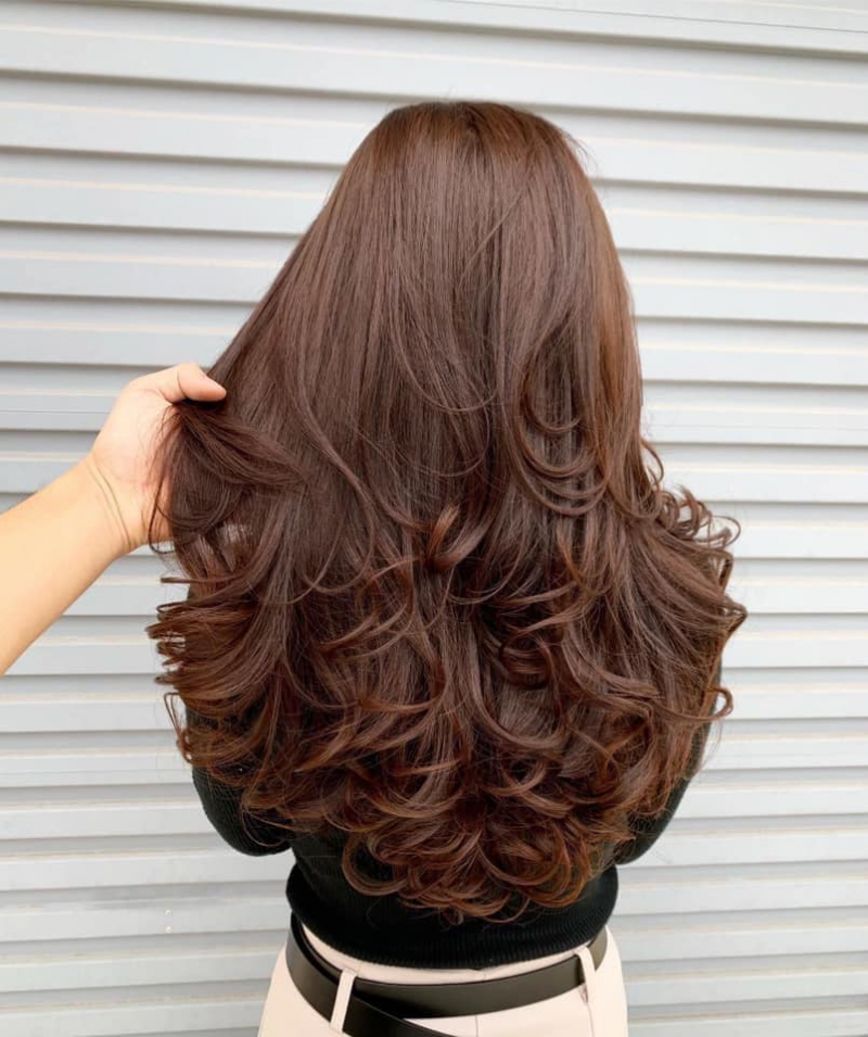 Hair Salon Nhật Mission